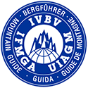 IVBV logo